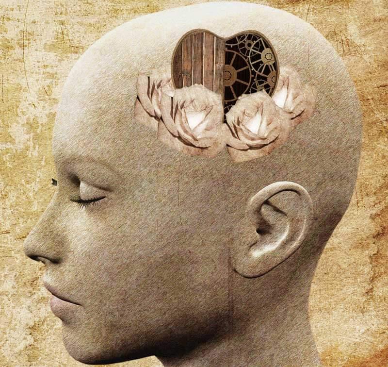 cabeza con corazón simbolizando que el mundo necesita más compasión