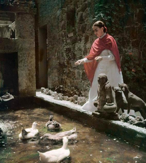 Frida echándole de comer a los patos