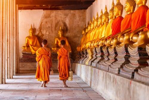 31 consejos de sabiduría tibetana