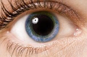 Pupila dilatada