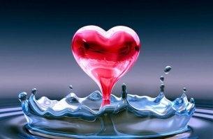 Amor Liquido-409975_800
