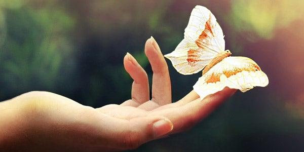 Amar es entregarse, querer es desear