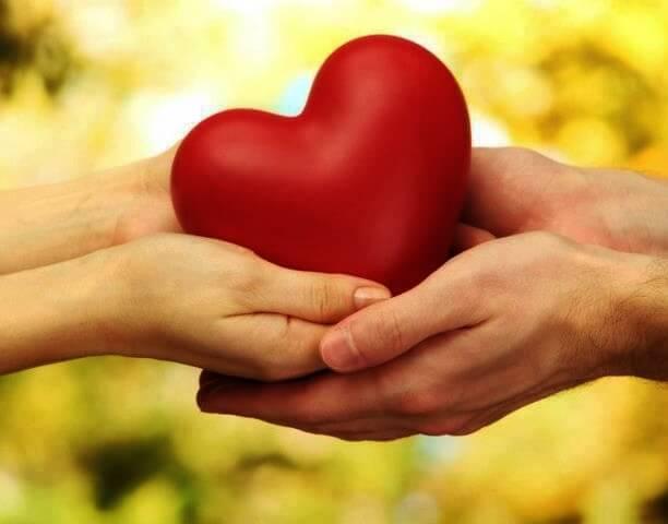 Manos de dos personas sujetando un corazón