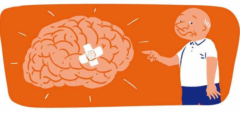 El poder de la estimulación sensorial