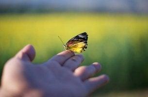 Mano con mariposa