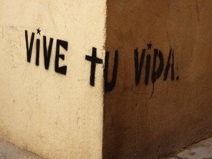 Graffitti-- VIVE TU VIDA-248481