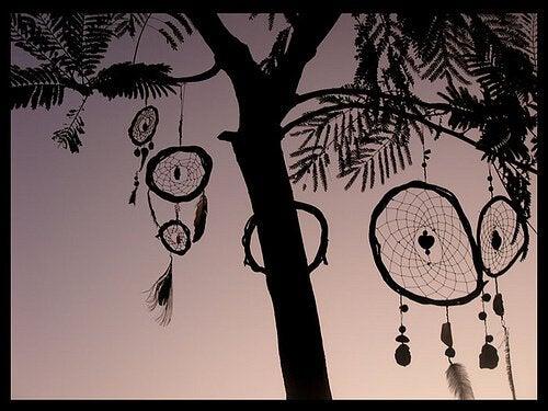 Atrapasueños colgados de un árbol