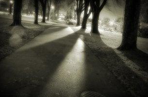 El silencio de la noche aumenta nuestros temores