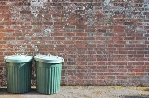 Metáfora del cubo de basura