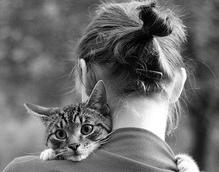 Cómo decir adiós al amigo fiel que me enseñó a ser humano (3)