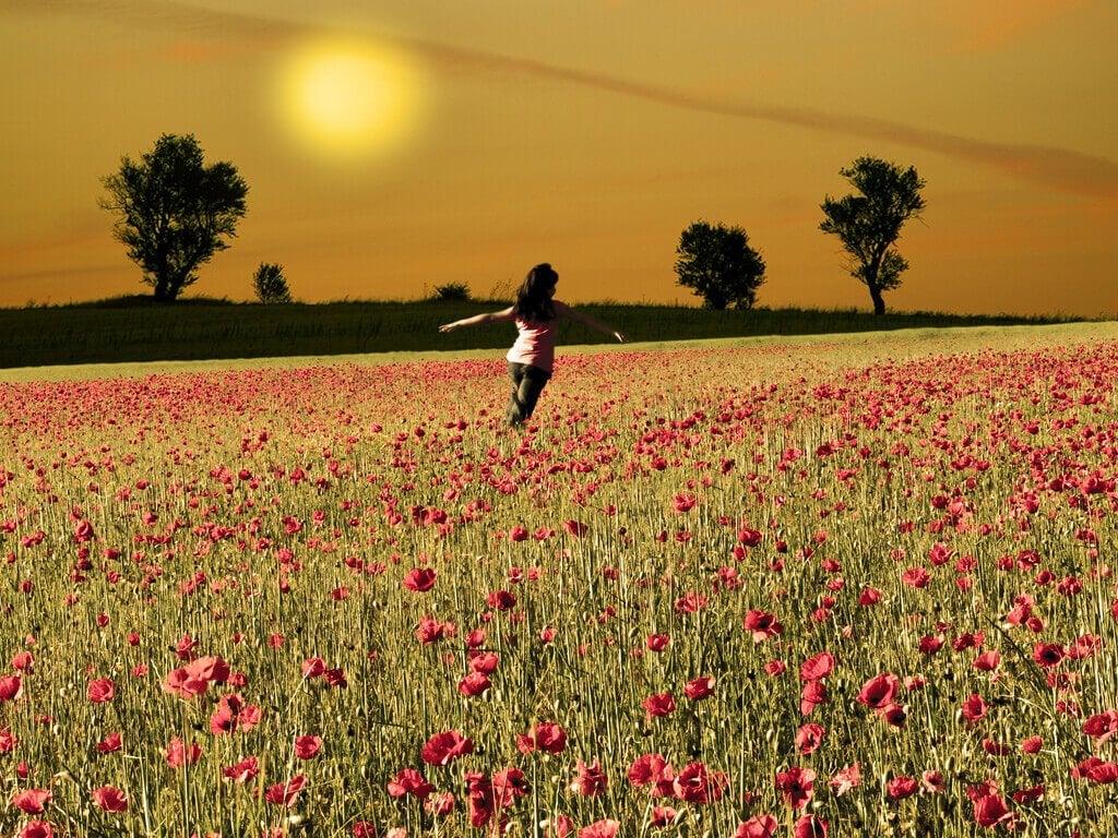Mujer con los brazos abiertos en un campo de amapolas