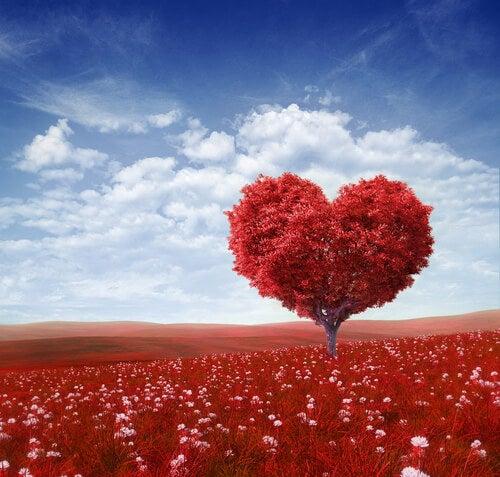 Árbol en forma de corazón