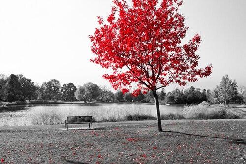 Árbol en un paisaje triste simbolizando el final