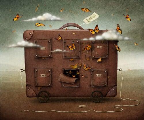 Maleta con mariposas