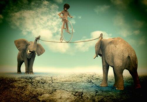 Niño en equilibrio sobre una cuerda sostenida por dos elefantes en su extremo