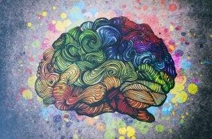 Cerebro de colores representando inteligencias