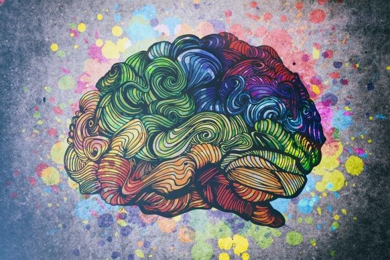 Descubre las 8 inteligencias del ser humano