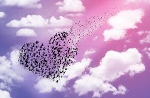 Corazón de pájaros en libertad