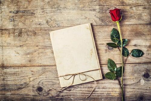 Hojas blancas y rosa roja para escribir una carta