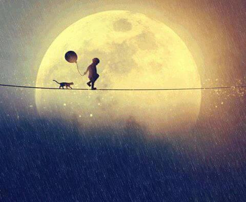 Niño caminando con su gato