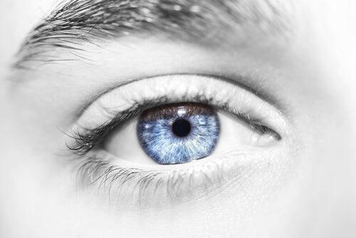 Ojo de color azul