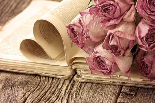 Rosas marchitas sobre libro con hojas abiertas