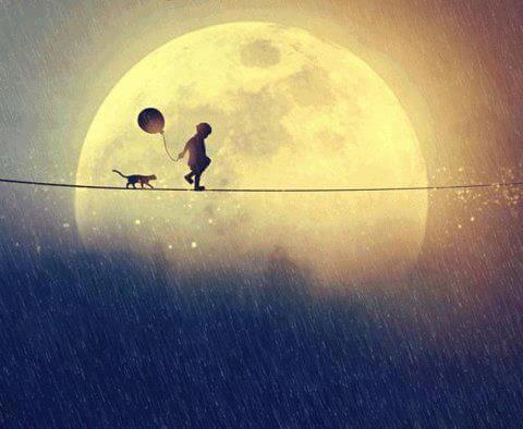 Niño caminando con un gato cerca de la luna