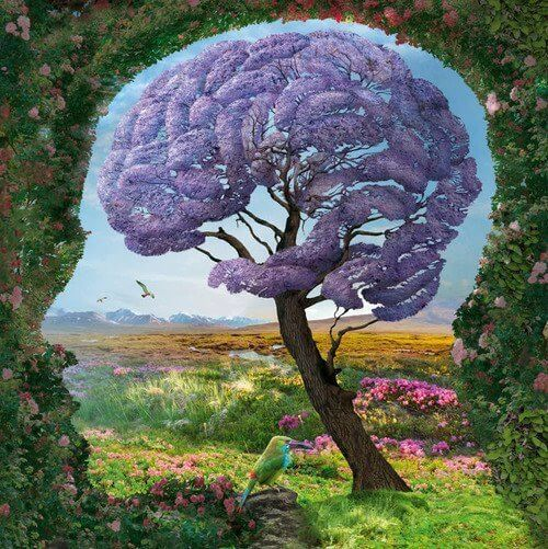 cerebro naturaleza