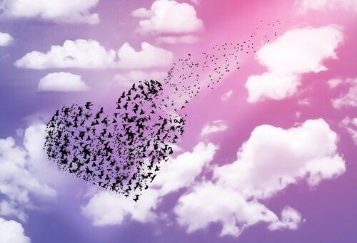 Corazón de pájaros
