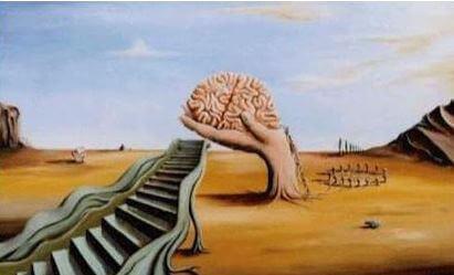 Dalí cerebro