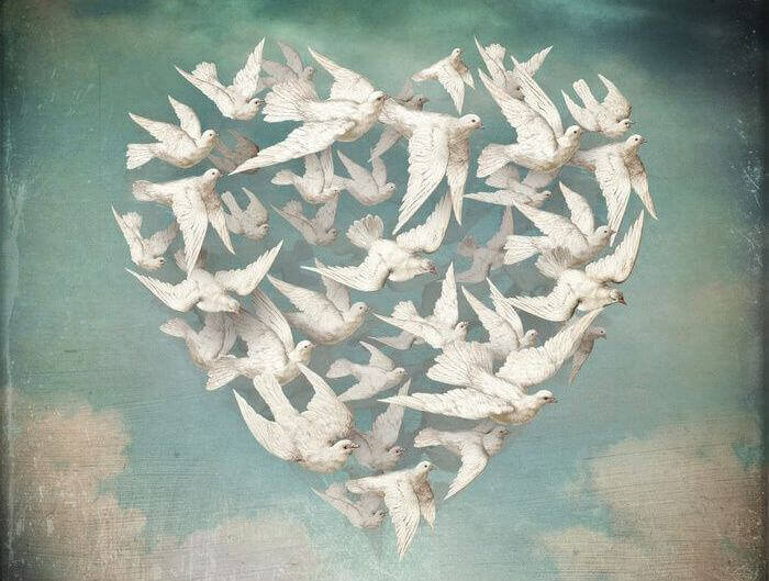 Palomas en forma de corazón