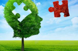 Estrategias transformadoras de la PNL