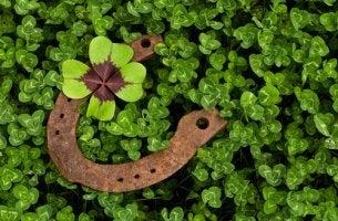 Trébol de cuatro hojas y herradura