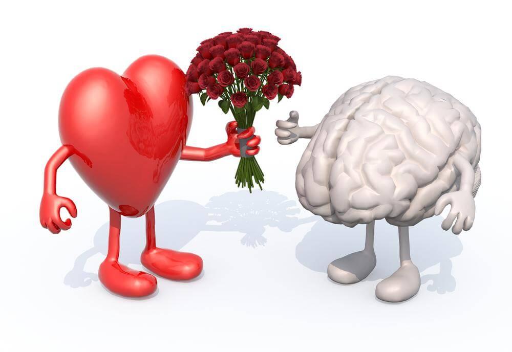 Corazón regalando un ramo de flores a un cerebro