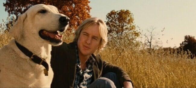 Hombre-con-un-perro-en-el-campo