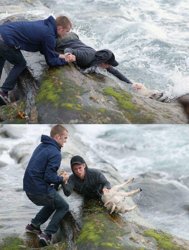 Chicos salvando a un cordero en el mar