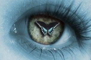 Ojo con una mariposa en la pupila