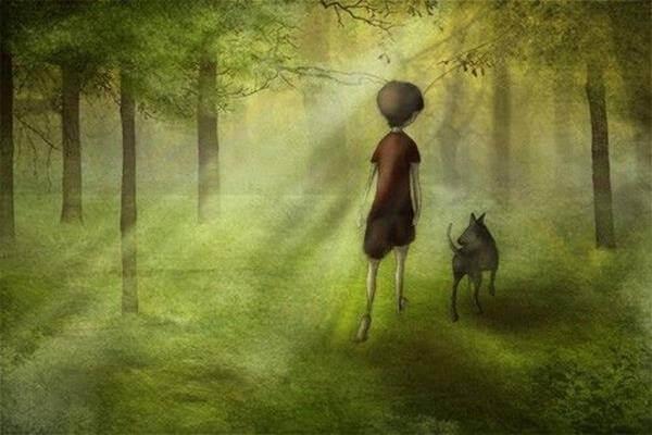 Niño paseando por un bosque con su perro