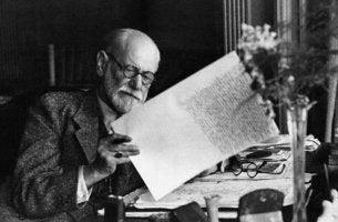Freud leyendo