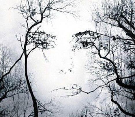 perfil femenino árboles