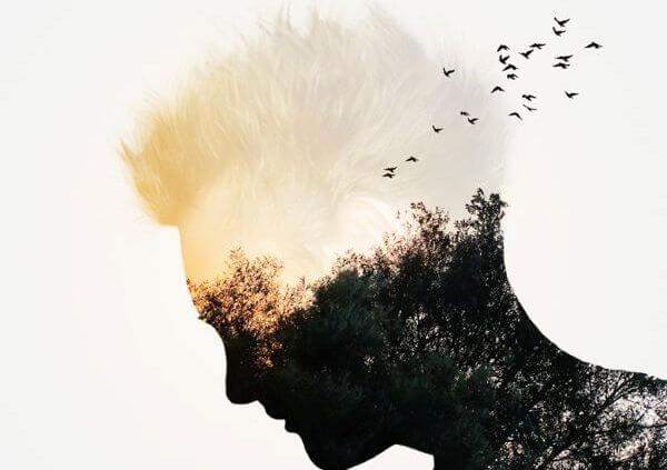 perfil masculino con naturaleza