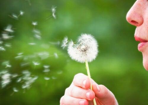 6 formas rápidas de simplificar tu vida
