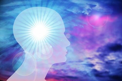 ¿Qué es la Inteligencia Emocional? Descubre la importancia de las emociones