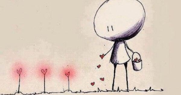 hombre regando con amor plantas en forma de corazon
