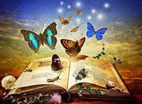 Libro lleno de mariposas