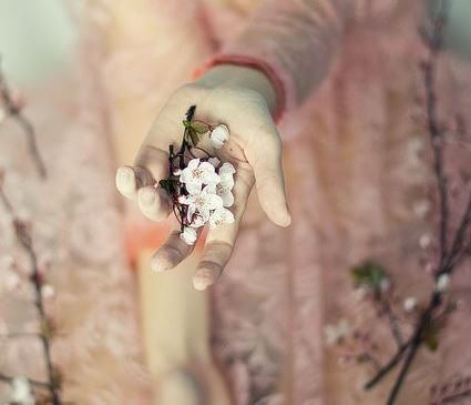 mano con flores representando el rencor del pasado