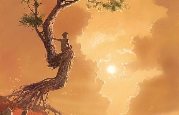 niño subido a un árbol frente a un atardeceer