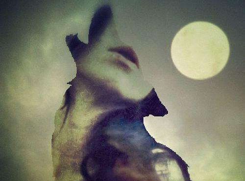perfil de un lobo con rostro de mujer en el centro representando la comunicación asertiva