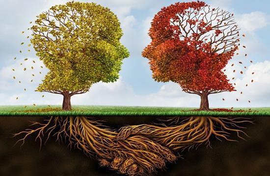 árboles-en-forma-de-cerebro