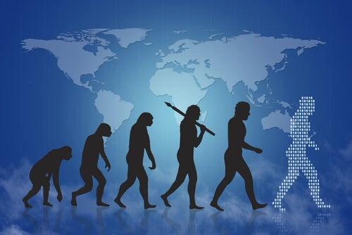 Evolución humana desde el mono muestra de la teoría de Darwin